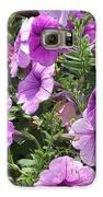 Petunias Galaxy S6 Case