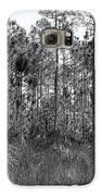 Pine Land In B/w Galaxy S6 Case by Rudy Umans