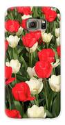 Red And White Galaxy S6 Case by Tracy Hall