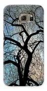 Those Gnarled Branches Galaxy S6 Case