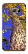 Tree In Motion Galaxy S6 Case