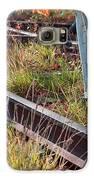 Urban Birches Galaxy S6 Case
