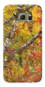 View From My Window Galaxy S6 Case by Lori Frisch