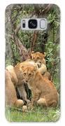 Masai Mara Lion Cubs Galaxy S8 Case