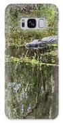 Alligator In Swamp Galaxy S8 Case