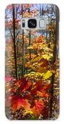 Autumn Splendor Galaxy S8 Case