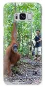 Sumatran Orangutan Galaxy S8 Case