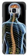 Nervous System Galaxy S8 Case