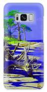 North Florida Beach Galaxy S8 Case