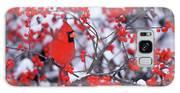 Northern Cardinal (cardinalis Cardinalis Galaxy S8 Case
