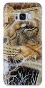 A Curious Lioness Galaxy S8 Case