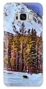 Lone Wolf Galaxy S8 Case