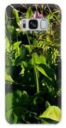 Alpine Fresh  Galaxy S8 Case