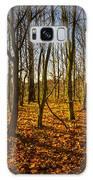 An Autumn Walk Galaxy S8 Case