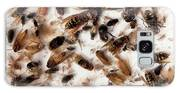 Asian Hornet Research Galaxy S8 Case