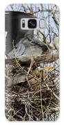 At The Heronry Galaxy S8 Case
