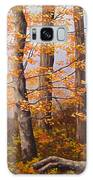 Autumn At Tishomingo State Park Galaxy S8 Case