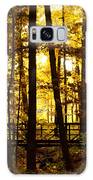 Autumn Bridge I Galaxy S8 Case