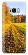 Autumn Harvest Galaxy S8 Case by Parker Cunningham