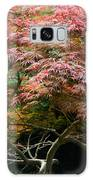 Autumn Is Here Galaxy Case by Parker Cunningham