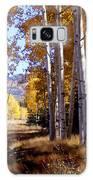 Autumn Paint Chama New Mexico Galaxy S8 Case