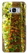 Autumn Vines Galaxy S8 Case