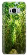 Bamboo Sky - The Magical And Mysterious Bamboo Forest Of Maui. Galaxy S8 Case