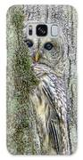 Barred Owl Peek A Boo Galaxy S8 Case