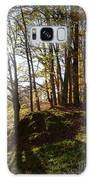 Beech Trees - Autumn Galaxy S8 Case