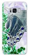 Black Swallowtail Abstract  Galaxy S8 Case