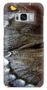 Bold Beauty  Galaxy S8 Case