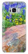 Boulder And Bluebonnets Galaxy S8 Case