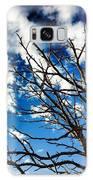 Branching Light  Galaxy S8 Case