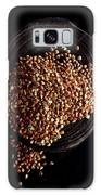 Buckwheat Grouts Galaxy S8 Case