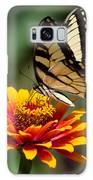 Butterfly Delight Galaxy S8 Case