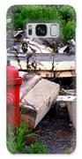 Chippewa Park Galaxy S8 Case