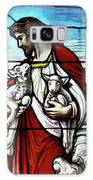 Christ The Good Shepherd With His Flock Galaxy S8 Case