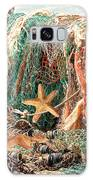 Colorful Catch - Starfish In Fishing Nets Square Galaxy S8 Case