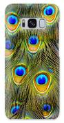 Colorful Plumage Of Peacock Galaxy S8 Case