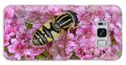 Common Tiger Hoverfly Galaxy S8 Case