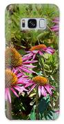 Coneflowers Galaxy S8 Case