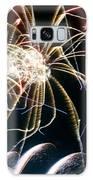Crustaceans Galaxy S8 Case