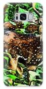 Deer's Green Day Galaxy S8 Case