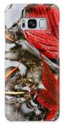 Fall Leaves Galaxy S8 Case