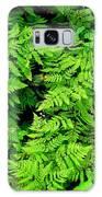 Ferns And Fauna Galaxy S8 Case