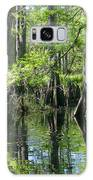 Fisheating Creek Galaxy S8 Case