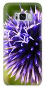 Floral Sticker Ball Galaxy S8 Case