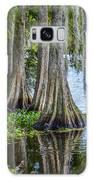Florida Cypress Trees Galaxy S8 Case