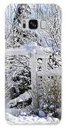 Front Yard Of A House In Winter Galaxy S8 Case by Elena Elisseeva