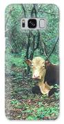 Haleakala National Park Hawaii Cow On Waterfall Trail Galaxy S8 Case